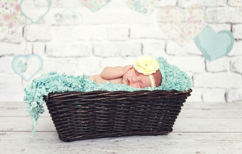 Фото обои цветок, корзина, ребенок, малыш, спит, девочка, младенец