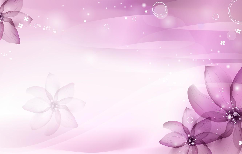 Фото обои фиолетовый, цветы, лепестки