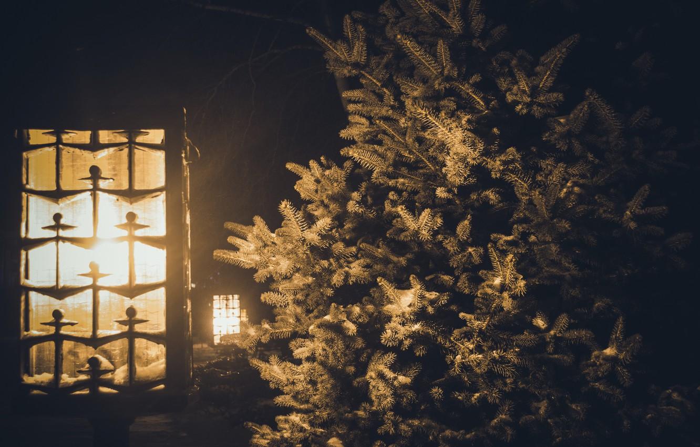 внимание, что зимняя ночь за окном фото цена