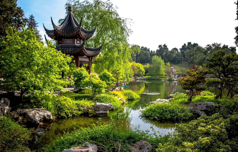 Фото обои зелень, деревья, пруд, парк, камни, Калифорния, пагода, США, кусты, San Marino, Huntington Botanical Gardens