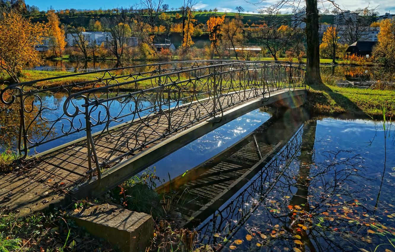 Фото обои осень, парк, ручей, Швейцария, мостик, кантон Цюрих