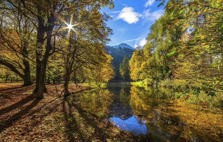 Фото обои осень, лес, небо, вода, солнце, облака, свет, горы, река, листва, Nature, Tree, Water, Autumn, Colors, …