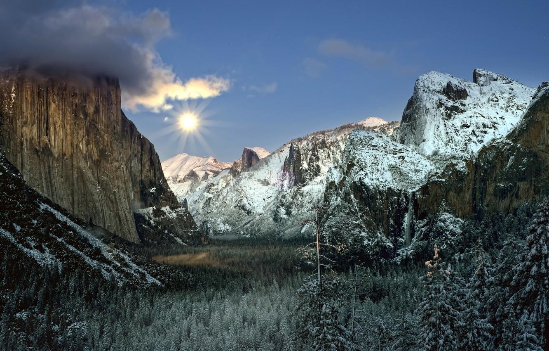 Фото обои лес, пейзаж, горы