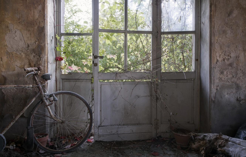 Фото обои велосипед, комната, дверь