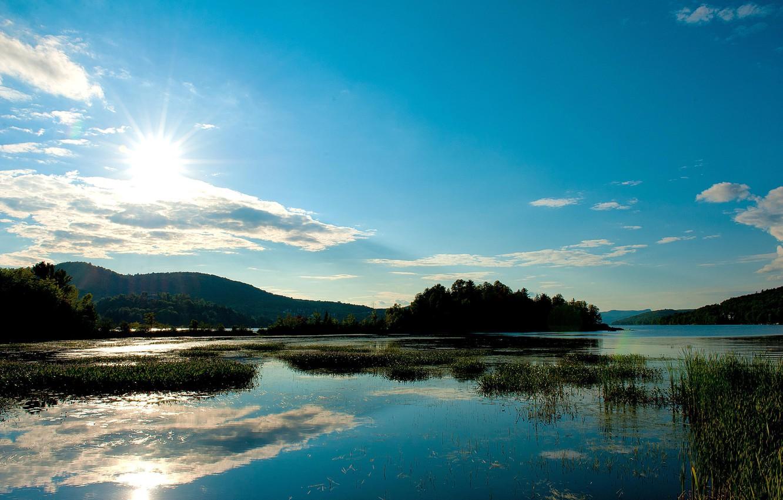 Фото обои лето, солнце, деревья, озеро, холмы, камыш
