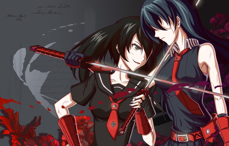Фото обои девушки, катана, Akame, Akame ga kill, Kurome, убийца Акаме