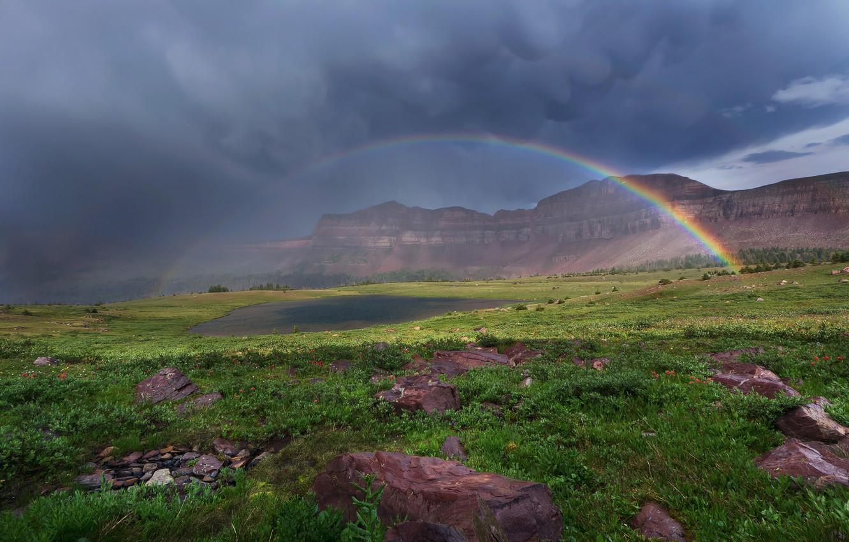 Фото обои небо, трава, облака, цветы, горы, тучи, озеро, камни, радуга