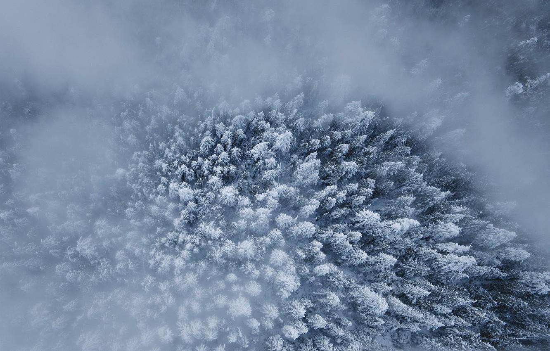 виды снега картинки называют накладные панели