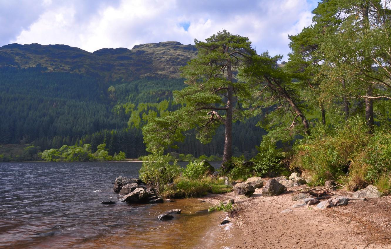 Фото обои лес, небо, деревья, горы, озеро, камни