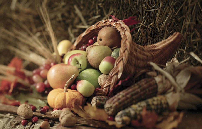 Фото обои осень, листья, ягоды, корзина, яблоки, кукуруза, урожай, тыква, орехи, овощи, груши, autumn, leaves, nuts, pears, …
