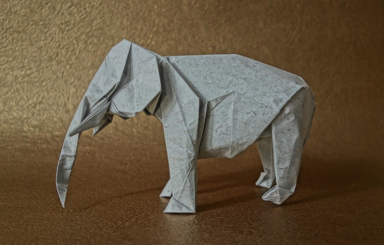 Фото обои бумага, фон, слон, оригами