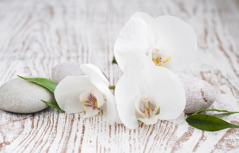 Обои листики, орхидея, спа камни, Полотенце. Разное foto 17