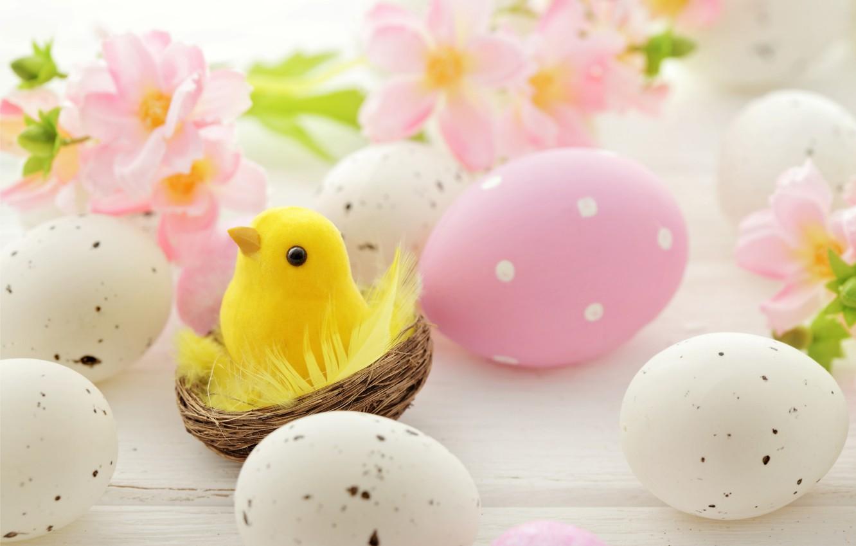 Фото обои цветы, яйца, Пасха, гнездо, flowers, spring, Easter, eggs