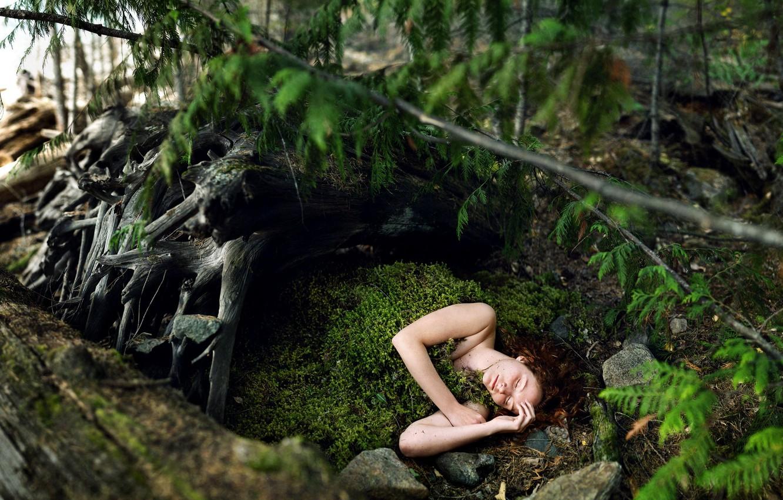 Фото обои лес, девушка, мох, ситуация