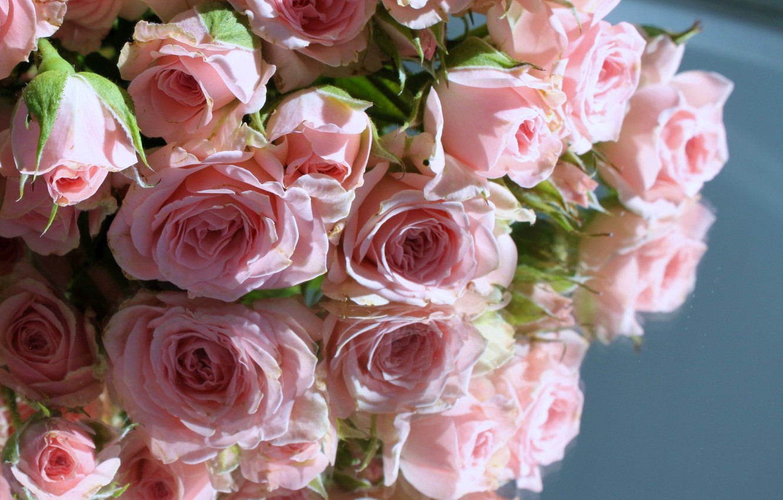 нежные маленькие розы фото образом резали
