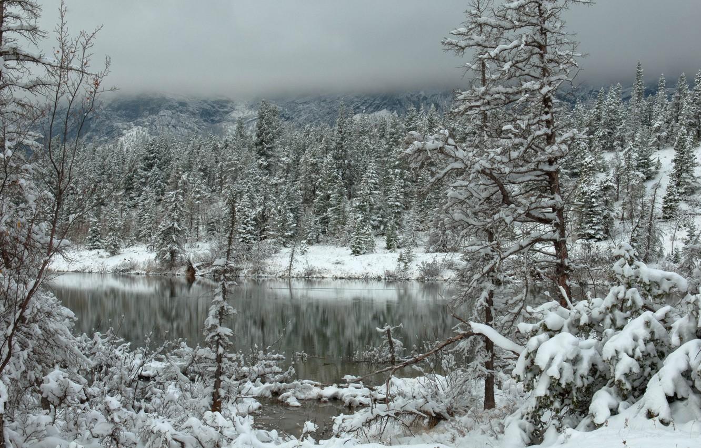картинки зимний снежный коми лес водопадом принимает своих