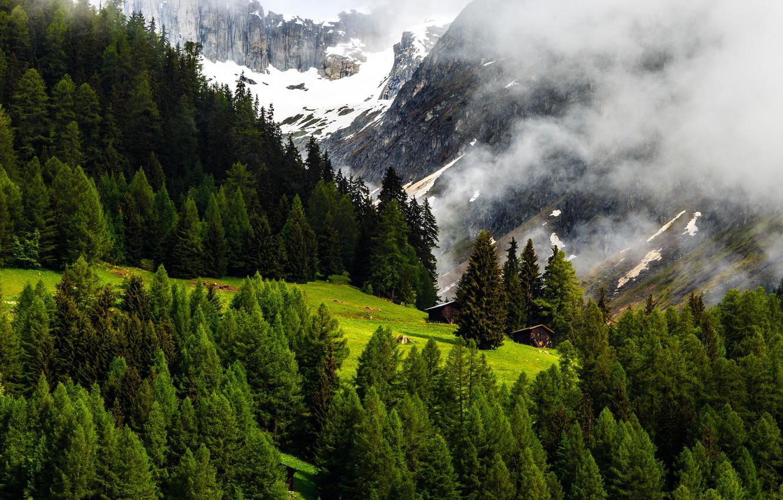 Фото обои Природа, Горы, Швейцария, Лес, Альпы