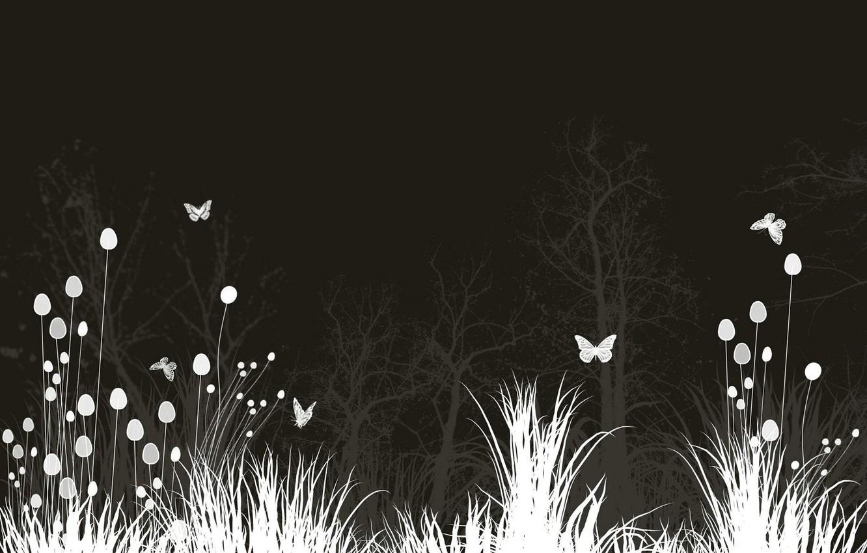 Фото обои Цветы, Ночь, Бабочки, Луг