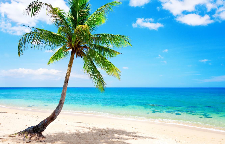 Фото обои песок, море, пляж, солнце, тропики, океан, берег, остров, summer, beach, sea, ocean, coast, blue, sand, …