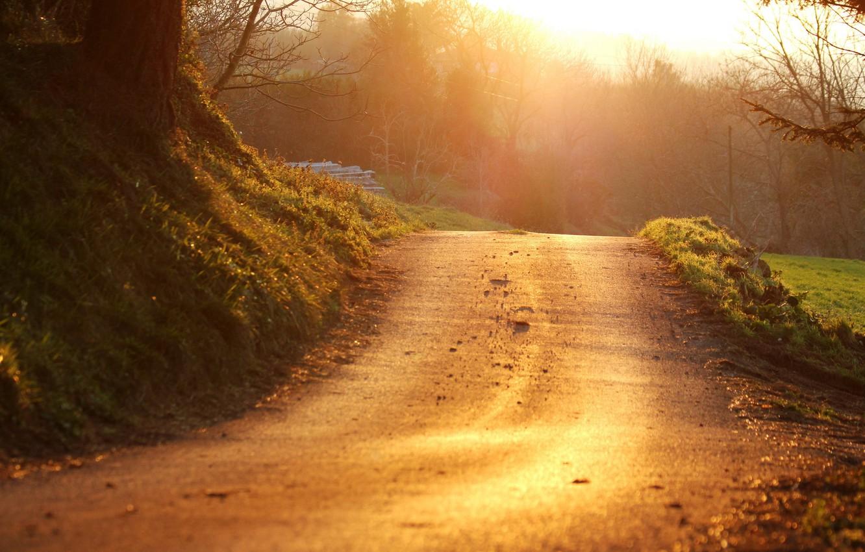 Фото обои дорога, пейзаж, закат