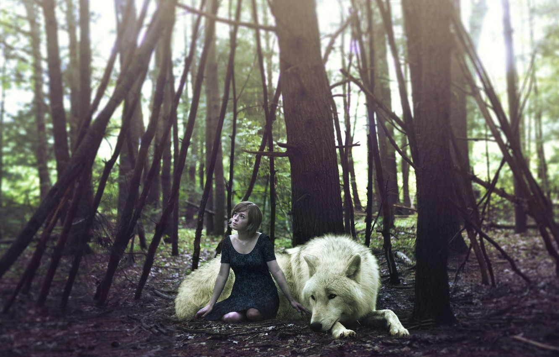 Фото обои лес, девушка, волк