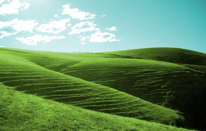 сорочинск картинка зеленые холмы изделие