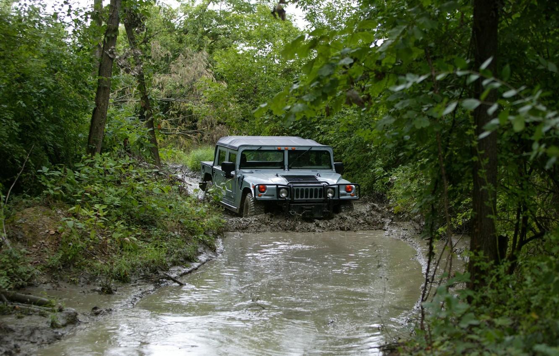 Фото обои лес, деревья, грязь, внедорожник, бездорожье, Hummer, гражданский