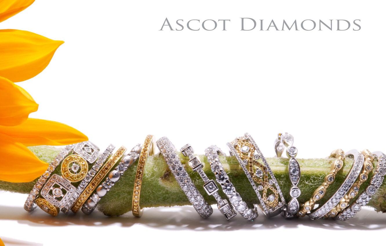 Фото обои цветок, кольца, украшение, diamond, jewelery