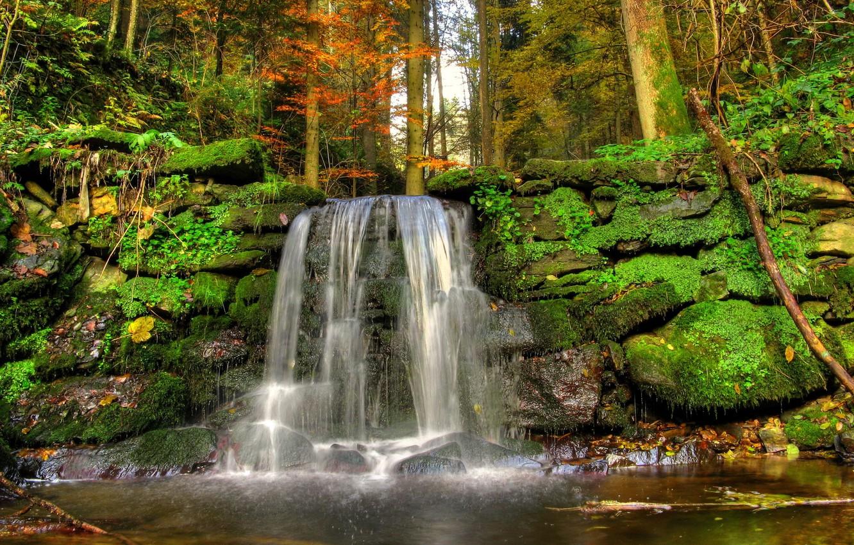 безусловно обои лесной водопад приводится название города