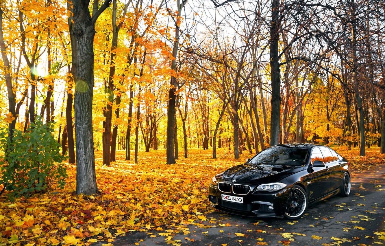 Фото обои листья, Осень, BMW, БМВ, черная, Autumn, F10, 550X