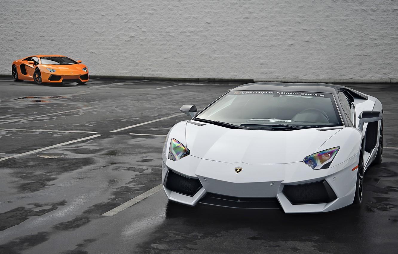Фото обои Lamborghini, Оранжевая, Белая, Orange, White, LP700-4, Aventador, 2014
