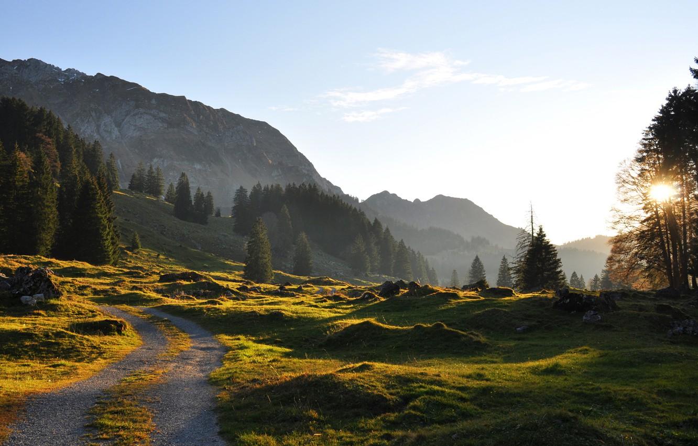 Фото обои дорога, зелень, лето, небо, трава, солнце, деревья, горы, камни, вечер, ели, склон, дорожка, ясный день