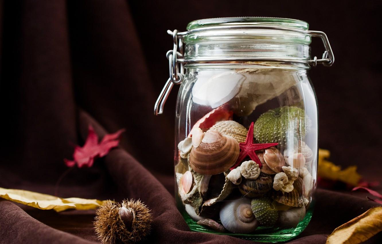 Фото обои листья, банка, ткань, ракушки, занавес, плод, каштан