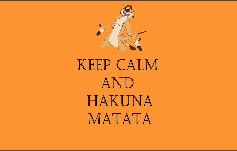 Фото обои жизнь без забот, тимон, keep calm and hakuna matata