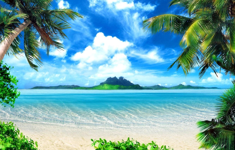 Фото обои пляж, природа, тропики, пальмы