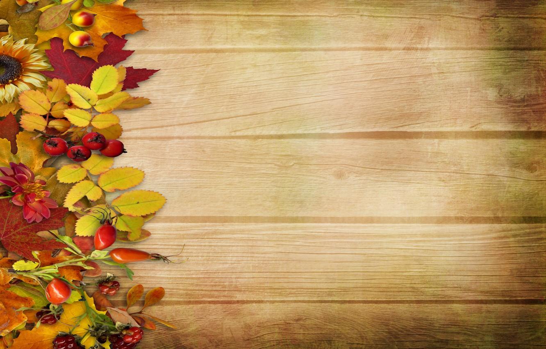 Фото обои осень, листья, цветы, ягоды, фон, дерево, vintage, background, autumn, leaves
