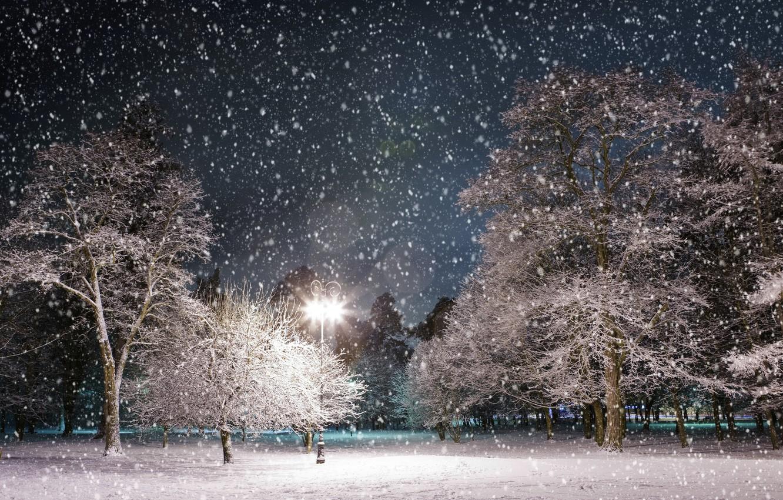Фото обои зима, снег, деревья, ночь, парк, фонарь