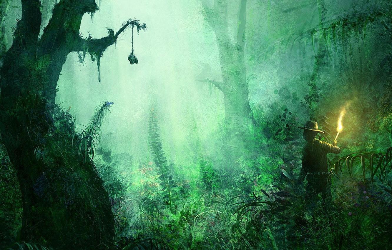 Фото обои трава, деревья, зеленый, путешественник, факел