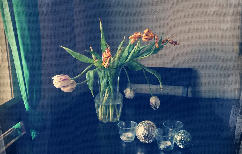 Фото обои цветы, стиль, натюрморт