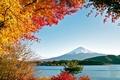 Картинка Фудзияма, горы, природа, деревья, море, озеро, вода, осень