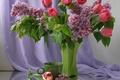 Картинка ваза, цветы, натюрморт, сирень, чашка, весна, тюльпаны