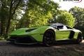 Картинка green, lamborghini, anniversary, aventador, lp700-4, 50th