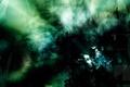 Картинка соты, тьма, зеленый