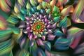 Картинка цветок, линии, цветные, лепестки