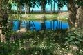 Картинка зелень, пейзаж, пруд, растения, клетка, сад, арт