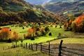Картинка зелень, лес, трава, деревья, пейзаж, горы, природа, забор, grass, forest, trees, landscape, nature, 1920x1200, mountains, ...