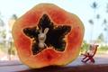 Картинка звезда, raymon, фрукт