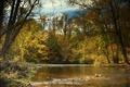 Картинка river, leaves, Природа, fall, листья, trees, sky, осень, река, лес, forest, деревья, autumn, colorful, water, ...