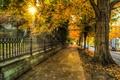Картинка street, архитектура, leaves, city, город, листья, trees, осень, природа, house, деревья, autumn, улица, дом, architecture, ...