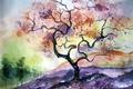 Картинка дерево, картина, акварель